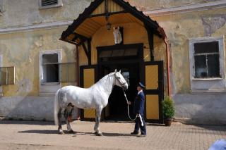Tschechien_2010_349m