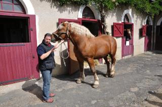 Frankreich_20100917_143258